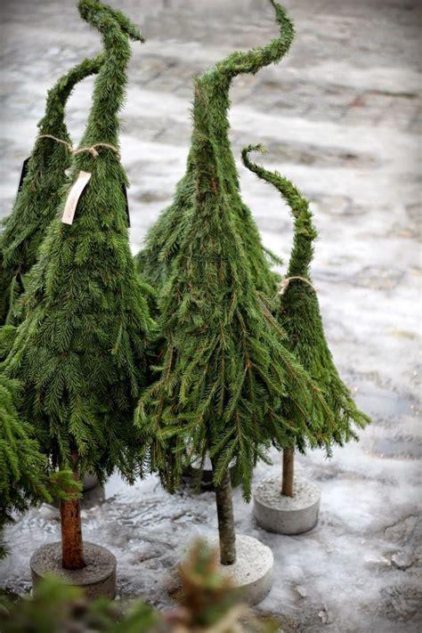 Weihnachtsbaum Aus Zweigen Binden by Vackra These Hobbit Trees Gotta Try This
