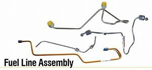 Fuel Line Assembly