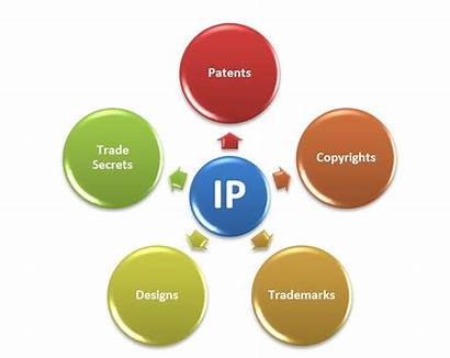 Intellectual Property Types Rights Every Laws Different