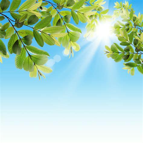 what to do with fresh breath of fresh air books breath of fresh air press