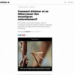 Se Débarrasser Des Mouches Naturellement : soulager les piqures pearltrees ~ Melissatoandfro.com Idées de Décoration