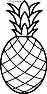 Pineapple Coloring Simple Outline Fruit Stencil Drawing Printable Coloringall Ananas Colorir Abacaxi Desenho Easy Vector Printables Pattern Hawaiian Crafts Brinquedos sketch template