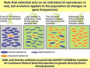 Science Of Biology