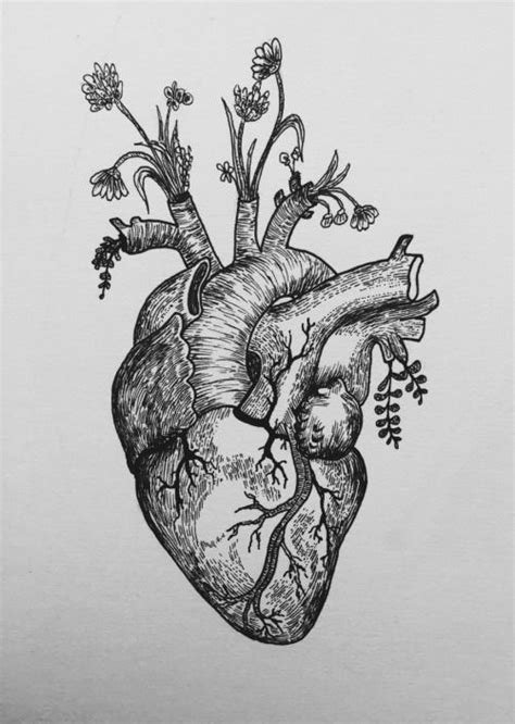 Anatomical Heart Drawing Tumblr | healthsanaz.com | Arts and crafts in 2019 | Custom tattoo