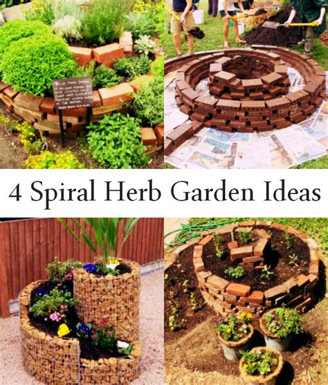 4 spiral herb garden ideas causes of eczema causes of