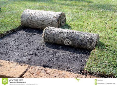 tappeto erboso a rotoli rotoli di tappeto erboso immagine stock immagine di