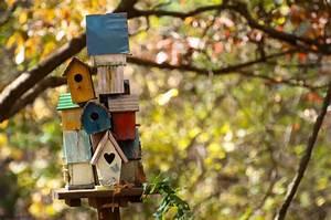 78 Decorative, Painted, Outdoor & Wooden Bird Houses (PHOTOS)