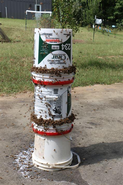diy bee yard feeder video keeping backyard bees