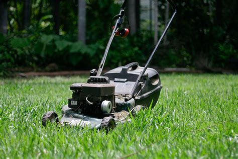 Tips On Mowing Wet Grass