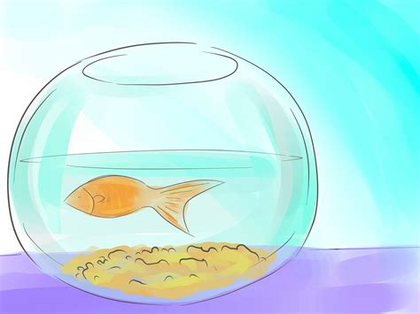 how to clean a fish bowl how to clean a fish bowl 28 images how to clean drains 11 steps with pictures wikihow 2016