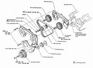 I Need To See A Diagram On 1995 Nissan Quest 3 0 Changing Timming Belt Don U0026 39 T Know How To Put