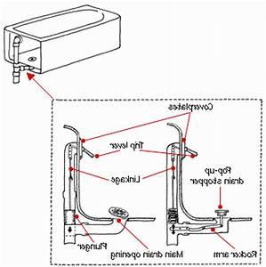 Anatomy Of Bathtub Drain Diagrams Fine Diagram Photos For