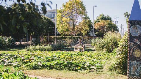 botanical gardens  rock arkansas garden ftempo