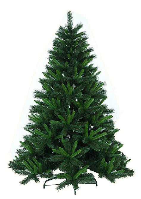 green light christmas tree china light green common christmas tree china verdancy