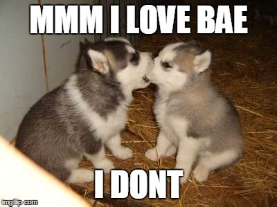 Cute No Meme - cute memes for bae image memes at relatably com