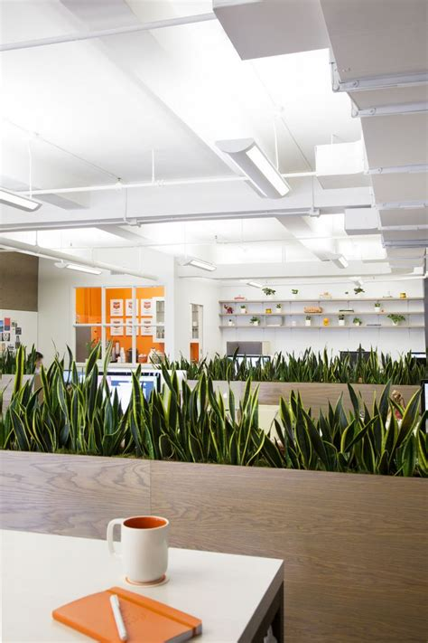 green office interior design 25 best ideas about office plants on plants