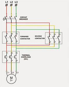 Electrical Standards  Overload Relay Working Principle And Features Of Thermal Motor Overload