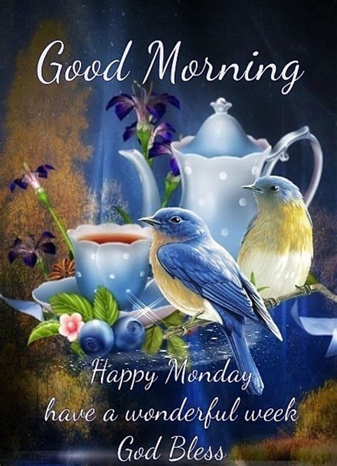 good morning happy monday pictures   images