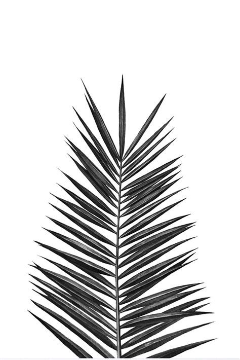 Cut out the shape and use it for coloring, crafts, stencils, and more. Palm Leaf Art Print By Nika | Rockett St George