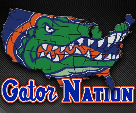 florida gators wallpaper hd  wallpapersafari