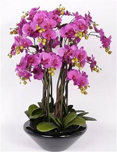 Arbre En Pot : superbe arbre orchidee en pot fleurs artificielles 90cm ~ Premium-room.com Idées de Décoration