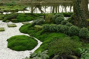 Japanischen Garten Anlegen : bodendecker f r japanischen garten kreative ideen f r innendekoration und wohndesign ~ Whattoseeinmadrid.com Haus und Dekorationen