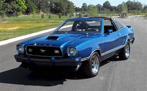 Blue 1978 Ford Mustang Cobra II Hatchback - MustangAttitude.com Photo Detail