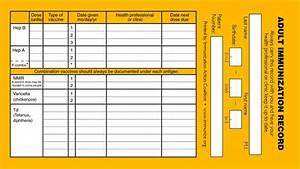 Sample School Organizational Chart Immunization Record Templates And Samples