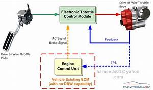 Electronic Throttle Control System  Etcs