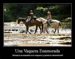 Imagenes bonitas de caballos con frases cortas de reflexión para compartir Animales Hoy