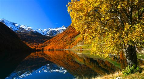 Festival info juuri nyt lue kuuntele… Herbst & Winter im Schnalstal in Südtirol
