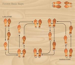 Foxtrot Basic Steps Stock Vector  Illustration Of Grain