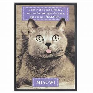 Birthday Card Funny Cards With Cats Cat