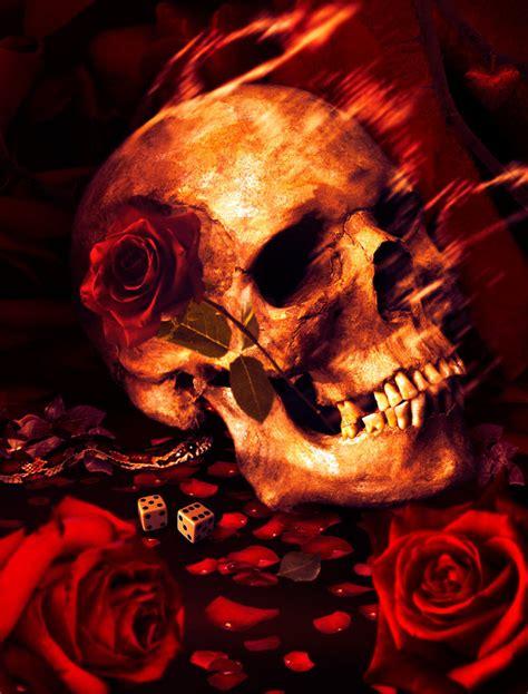 Nature Morte Rui Abel Deviantart