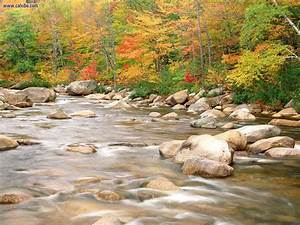 Nature: Swift River And Autumn Colors White Mountains ...