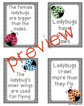 ladybugs facts amp opinions by all y all need teachers 651 | original 1383501 2