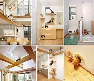 20, Creative, Indoor, Cat, Playground, Ideas