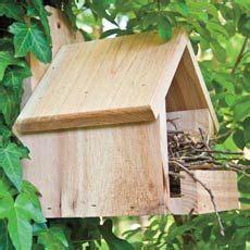 cardinal nest box cardinals dont nest  enclosed boxes bird house bird house plans