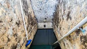 comment traiter lhumidite dans une cave maisonetanche With traiter l humidite dans une maison