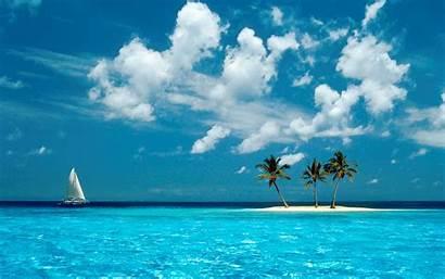 Island Coconut Trees Wallpapers Islands Ocean Windows