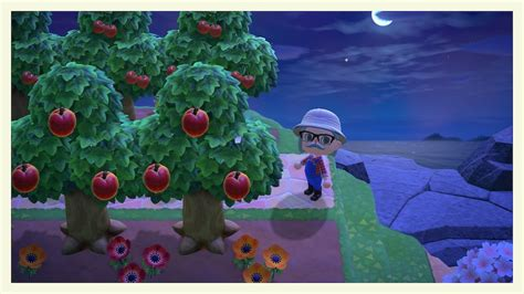 あつ 森 果物