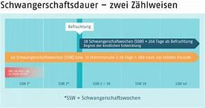 Berechnen Der Ssw : sex in der ssw 38 mistress slave ~ Themetempest.com Abrechnung