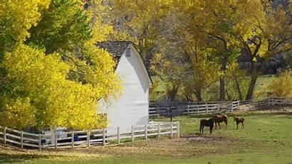Country Fall Desktop Farm Autumn Wallpapers Horse