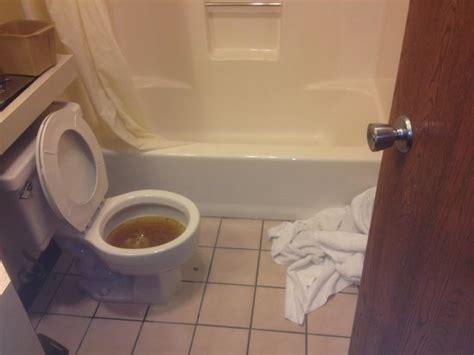 Toilet Won't Flush  Picture Of Super 8 Melrose, Melrose