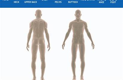 Trigger Point Pain Charts Points Chart Relief