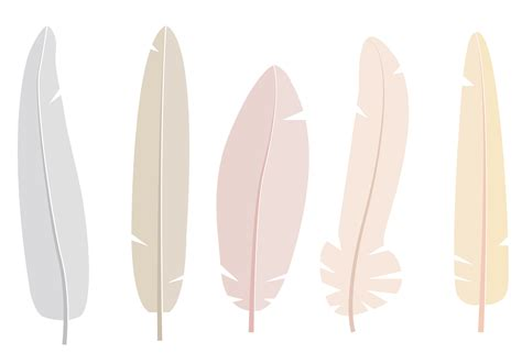 feathers vector   vector art stock