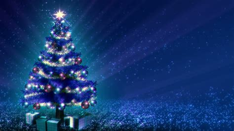 magical growing christmas tree  stock footage video