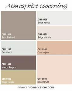 17 meilleures idees a propos de couleurs de peinture beige With palettes de couleurs peinture murale 0 stilvoll palette de gris avec on decoration d interieur
