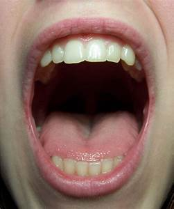 Mouth Detail Front by Della-Stock on DeviantArt