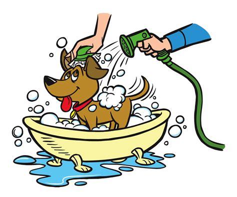 best pet vacuum car wash pet wash bath stations pet wash